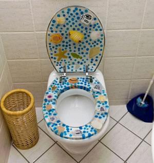 Toalettsitsar med motiv är ute