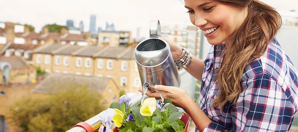 Informeer op voorhand over wat je planten nodig hebben
