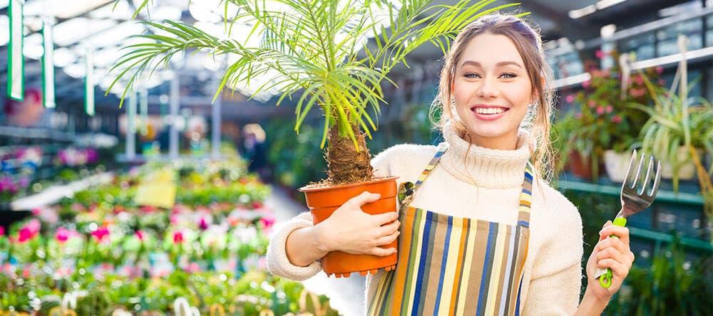 Kombiniere Palmen und Farne mit bunten Blumen für eine optimale Atmosphäre