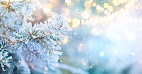 Atmosphärische Wintermotive, zu Lande und in der Stadt