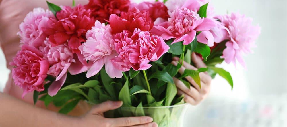 Schneide die Stiele zu Hause sofort an, damit sich deine Blumen länger halten