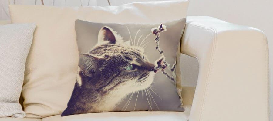 Gerade tierisch modern: Kissenbezüge mit Tiermotiven
