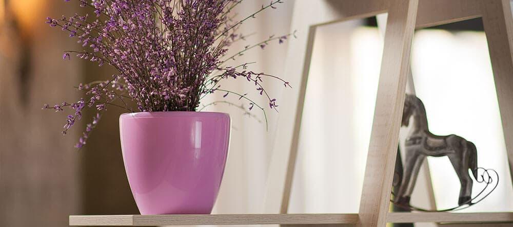 Duft und Farbe von Pflanzen sind wichtig für eine entspannte Atmosphäre