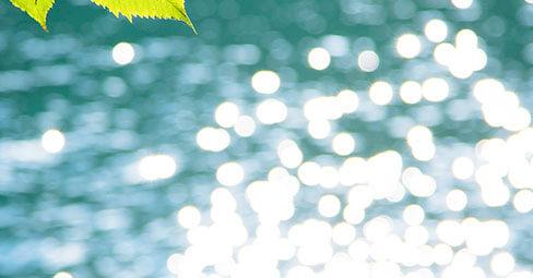 Mit natürlichem Licht zu atemberaubenden Fotos