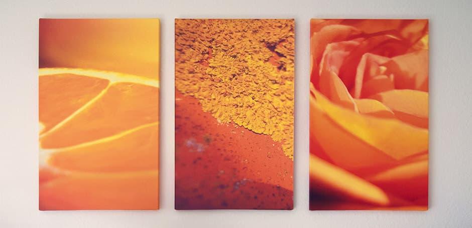 Drei verschiedene Bilder mit gleichem Farbschema