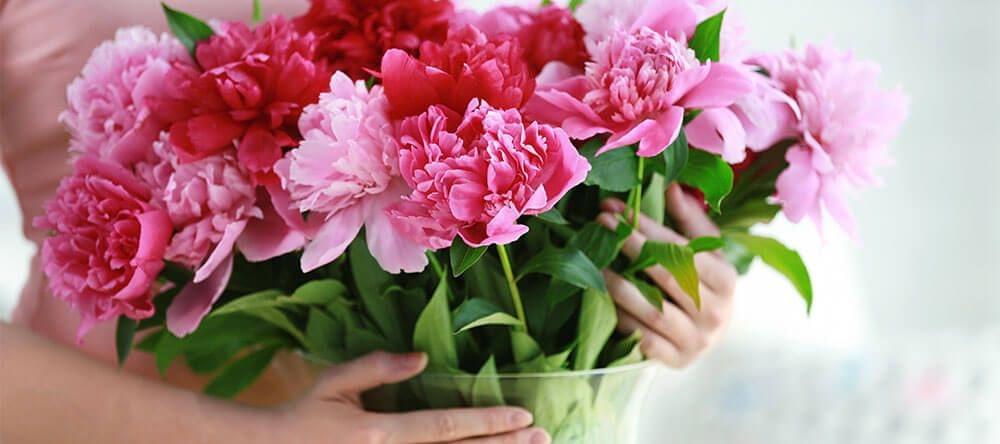 Corta los tallos enseguida al llegar a casa para mantener tus flores por más tiempo