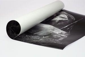 Papel fotográfico mate satinado en tamaño XXL