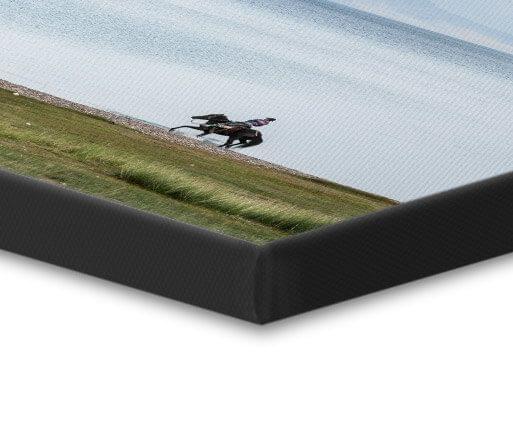foto su tela bordo nero